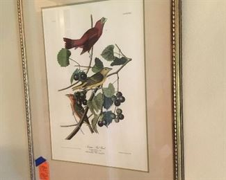 Amsterdam edition of Audubon by Ravell one of two