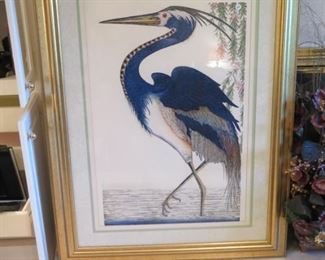 giant bird picture