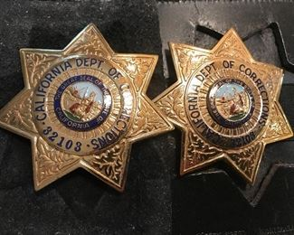 Obsolete Police Badges