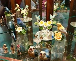Bird collection