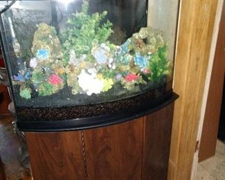 Aquarium and all the contents!