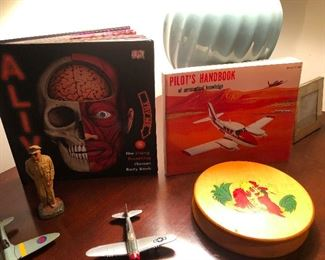 That book on the left is titled ALIVE and it's a POP UP book of human organs and things! SO COOL -- oh, and those are vintage metal model airplanes