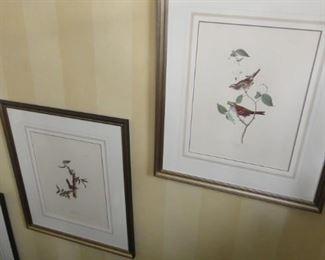 3 large Matching bird prints,