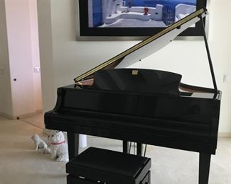 Yamaha Clavinova Player and Regular Piano $9,000 OBO