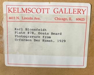 Picture Gallery label.