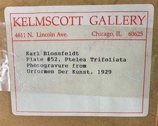 Gallery Label.