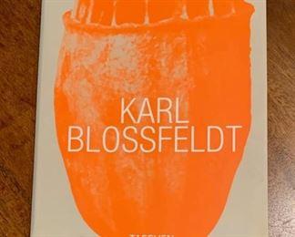 Book about Karl Blossfelft.