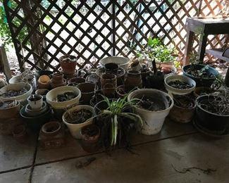 terra cotta pots and plastic pots