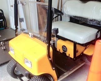 Cricket Resort Style Golf Cart