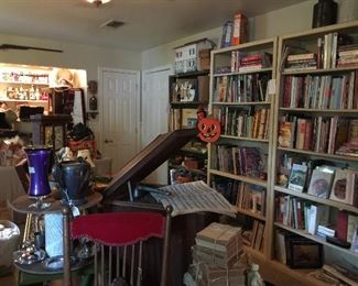 The book section of the game room with every topic you can think of!