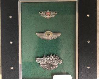 Framed collection of Harley Davidson pins