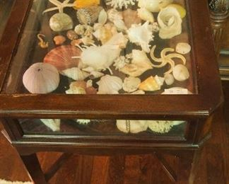 Shells and display cabinet (one of two)