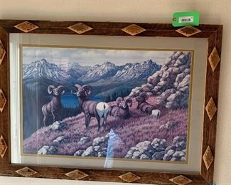 Large Matted Ram Print with Wooden Frame