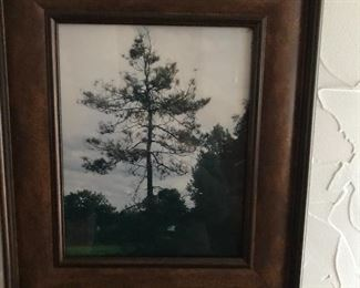 Framed photo