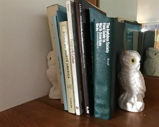 Pair of alabaster owls from Italy