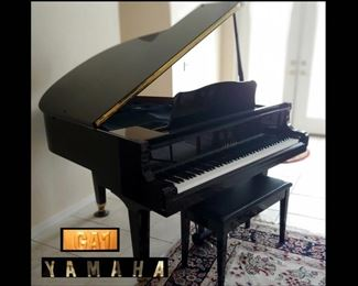 Yamaha GA1 PE Acoustic Baby Grand Piano in Excellent Condition, Rarely Played although Regularly Tuned and Maintained. It is 4ft 11in, comes with Piano Stool and All Original Paperwork and Receipts
