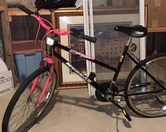 Grand Forks Murray woman's bike