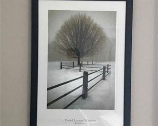 David Lorenz Winston Framed Print Solitude.