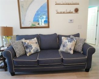 A Must Have Sofa -- Extremely Comfortable