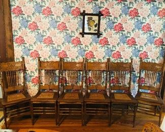 6 pressed back oak chairs with cane seats