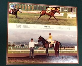 horse racing picture one of many
