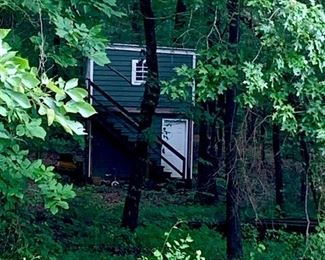 View of Playhouse tucked in the woods from the yard