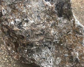 Agatized Petrified Stump