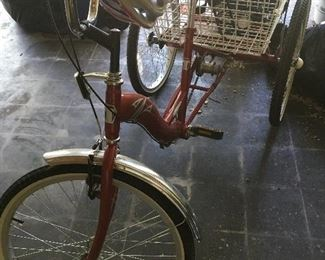 TriStar adult Tricycle