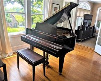 Yamaha Baby Grand Piano - GH1 series