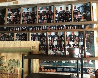 bears poster and ladders