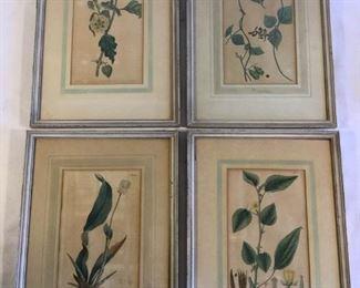 Old Botanical Originals (4Pcs) https://ctbids.com/#!/description/share/209681