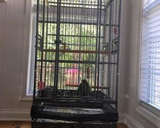 Extra Large bird cage, bird is not included