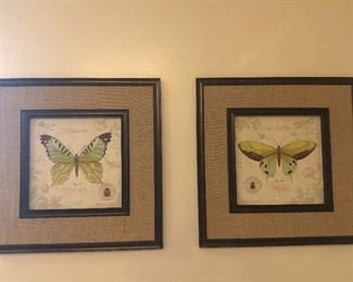 Butterfly prints in frame