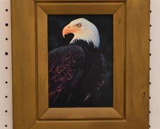 Framed Artwork & Paintings (Eagle)