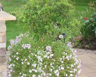 Full Garden Pot