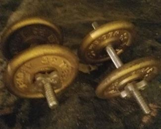 Dumb bells weights. Set of 2