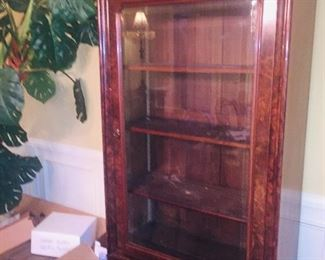 beautiful glass front book shelves or narrow china cabinet
