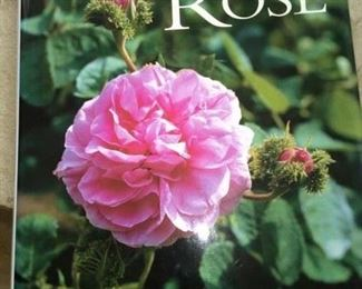 "Garden book by David Austin - ""The Rose"""