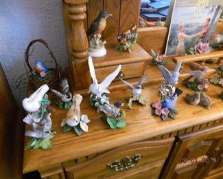 birds figures