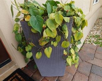 Outdoor Planter-Plants sold separately