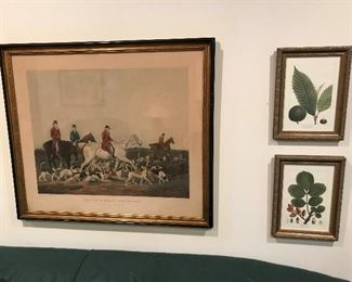 """The Earl of Derby's Stag Hounds"" framed antique hunting print; framed botany prints."