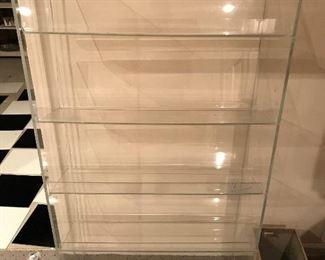 Acrylic shelving unit.