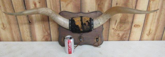Wall Horns w/Hat Hooks