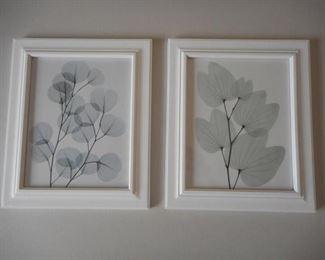 """Lot of 2 framed leaf prints, 12.5 x 10.5"""" https://ctbids.com/#!/description/share/210634"""