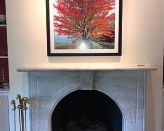Art Deco style duck head fireplace set, Fall photograph framed