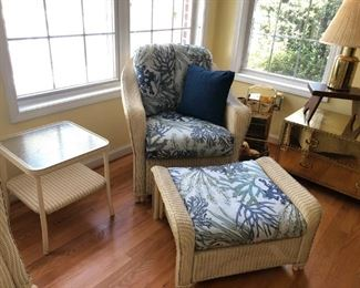 Like New Lloyd Flanders Reflection Lounge Chair & Ottoman with Fabric Upgrade