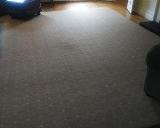 Room sized tan carpet