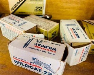 Wildcat .22 Ammo