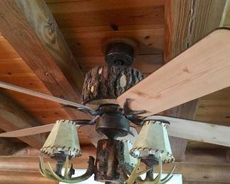 Ceiling light fixture & fan