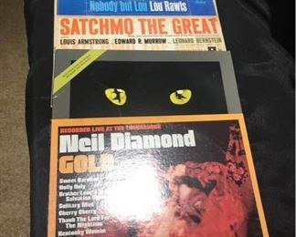 Vinyl Neil Diamond, John Denver, Cats, Satchmo the Great, Lou Rawls, Spyro Gyra